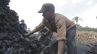 أثناء عملية تعبئة للفحم بعد انتهاء حرقه (8)