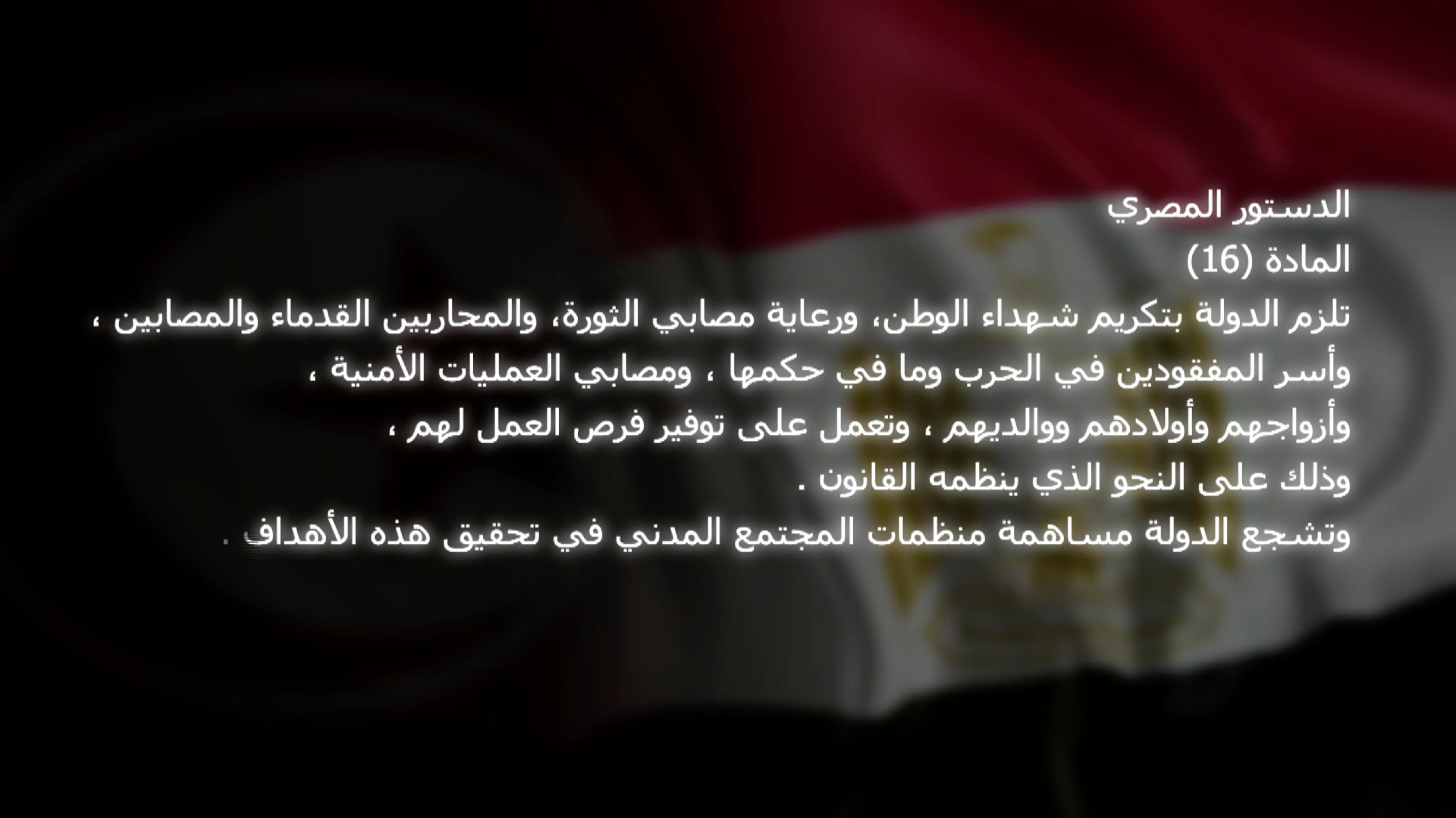 Egypr_constitute